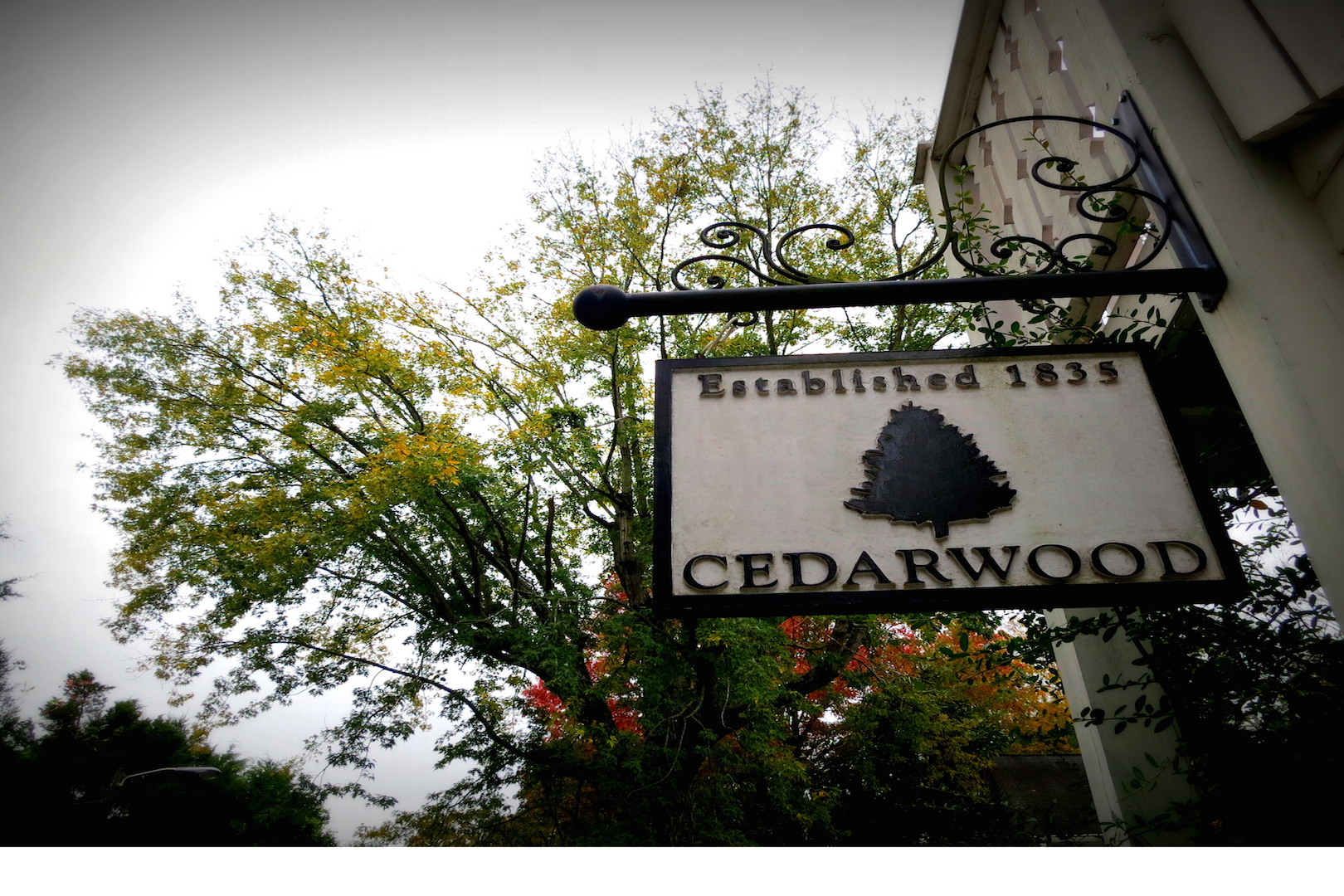 space at Cedarwood