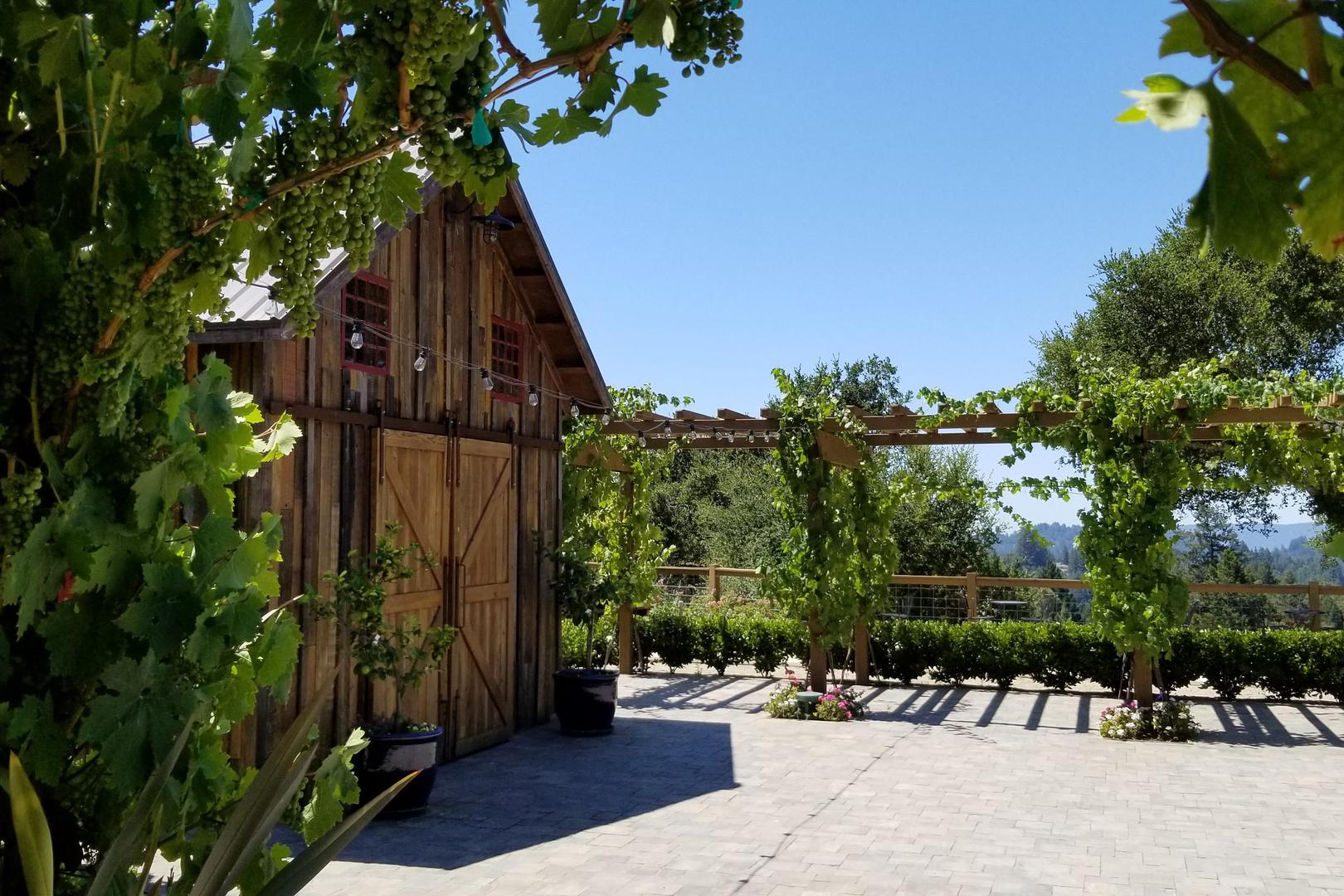 space at Regale Winery & Vineyards