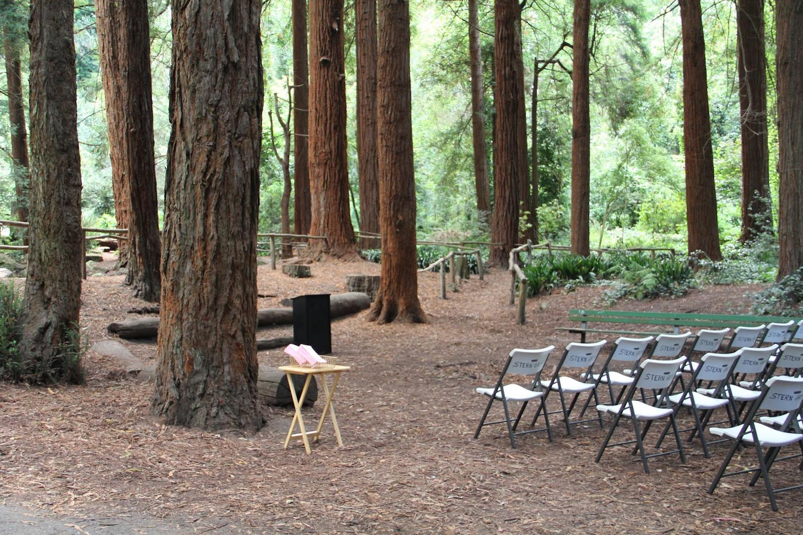 space at Sigmund Stern Grove Park